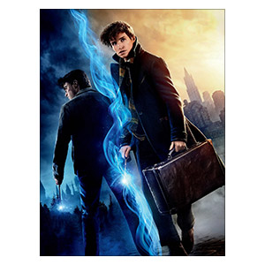 Fantastic Beasts and Where to Find Them. Размер: 30 х 40 см